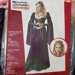 Lady in Waiting/Queen Halloween costume